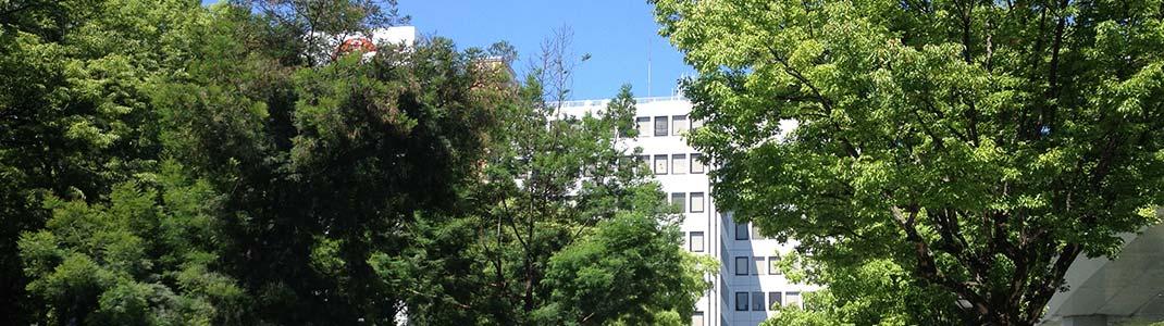 木々の緑の間から見える名古屋丸の内ビル
